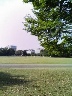 公園でお散歩