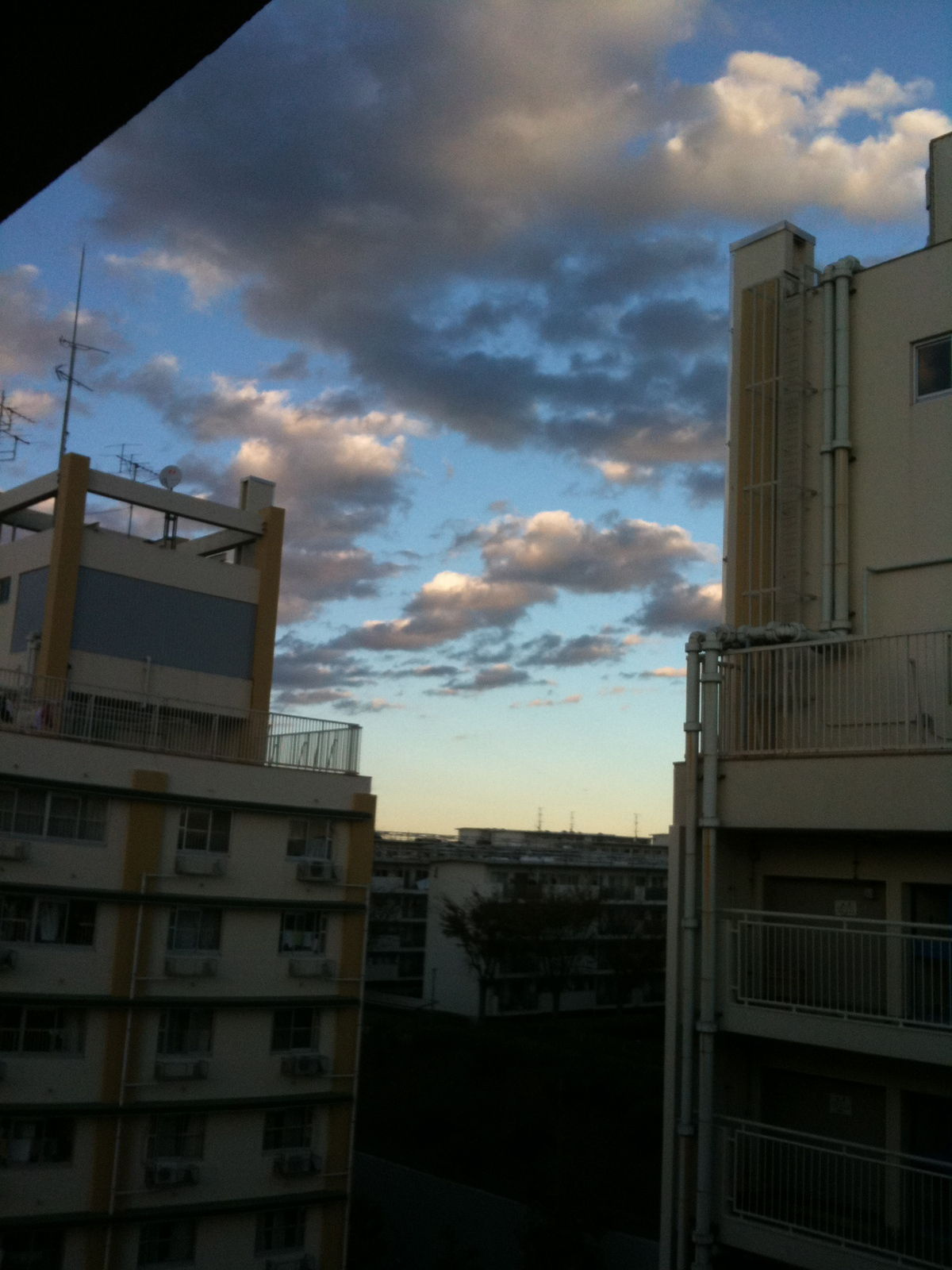 Img_0041_7